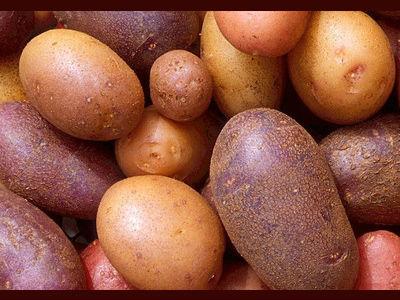 You Say Potato Event